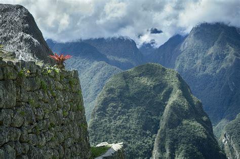 fondos de pantalla paisaje montanas flores rock