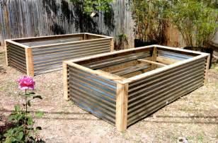 Corrugated Metal Raised Garden Beds - raised vegetable beds contemporary landscape austin by elizabeth mcgreevy