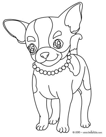coloring pages chihuahua dogs chihuahua coloring pages hellokids com