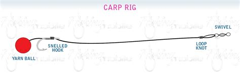 carp fishing rigs diagrams carp fishing rigs diagrams carp free engine image for