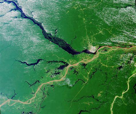 amazon river travel guide to amazon river brazil xcitefun net