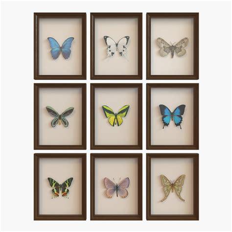 3d model framed butterfly