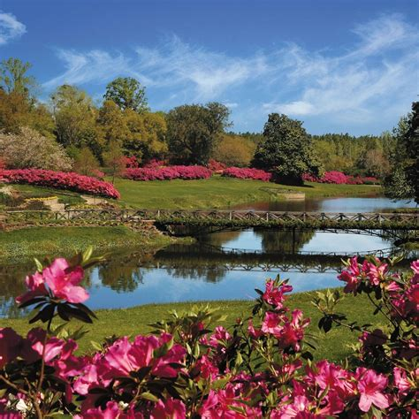 bellingrath gardens best of the road