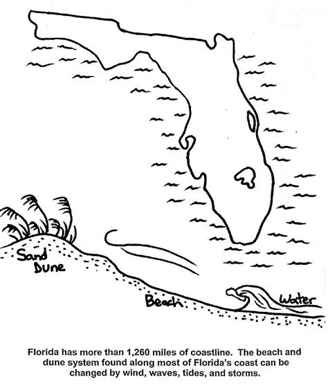 Florida Coloring Page florida panther coloring page az coloring pages