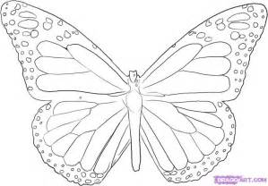 How To Draw Butterfly Butterfly Images Az Coloring Pages
