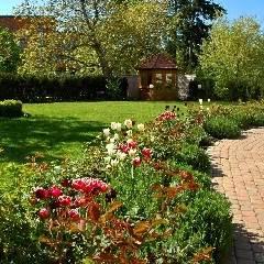 manutenzione giardino condominiale fiore e vivai parchi e giardini
