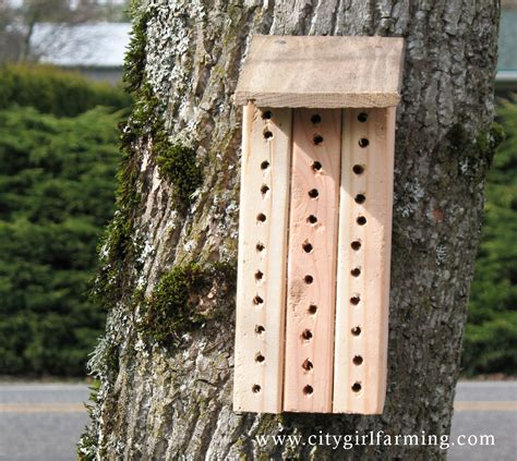 mason bee house if you build it they will come hopefully city girl farming blog