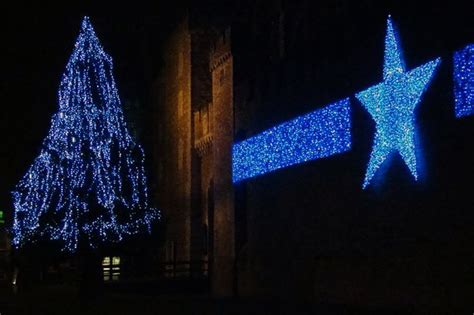 the cost of cardiff s artificial christmas tree has been