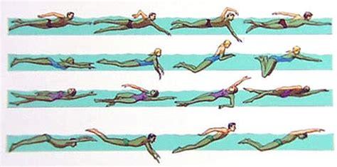 swimming videos freestyle backstroke breaststroke butterfly