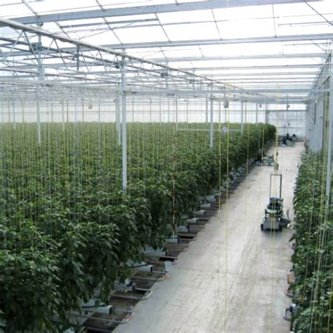 lade per la coltivazione indoor lade servono per la coltivazione indoor coltivazione