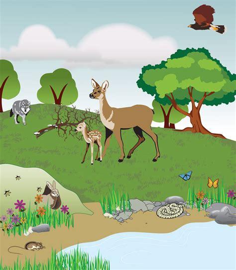 exle of ecosystem image gallery ecosystem exles