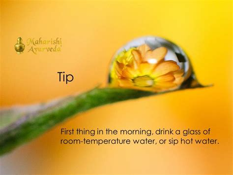 Is Room Temperature Water Better For You by Simple Ayurvedic Morning Tip Ayurveda