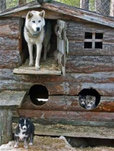 husky dog house dog house on pinterest luxury dog house dog houses and cool dog houses