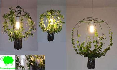 living lamp  green light grows   plant