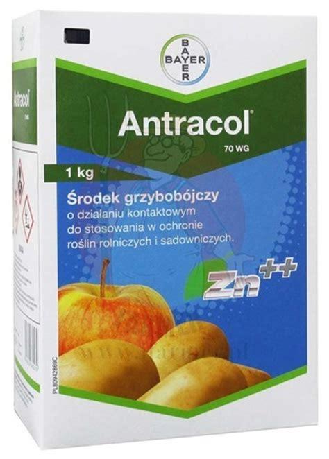Antracol 1kg antracol 70 wg 1 kg plant protection użytkownicy profesjonalni grzybob 211 jcze brands bayer