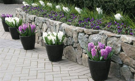 best flowers for small pots 8 small garden ideas to hold entertaining parties