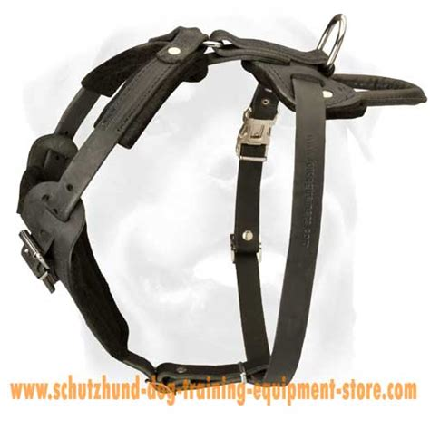 working harness padded harness for working dogs h1 1096 leather harness with chest plate