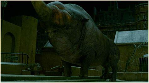 liste des personnages de zoo ou l assassin les animaux fantastiques les cr 233 atures