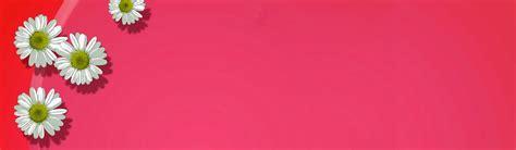 header design pink girly backgrounds