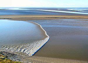tidal bore wikipedia