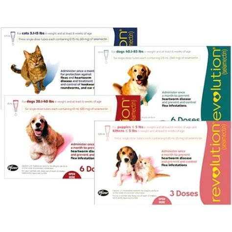 flea protection for puppies revolution flea and heartworm protection for dogs