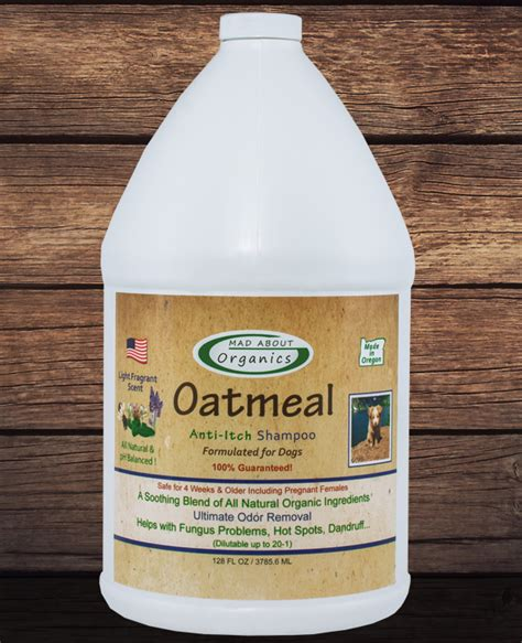 anti itch shoo for dogs organic oatmeal shoo 1 gallon formulated for dogs