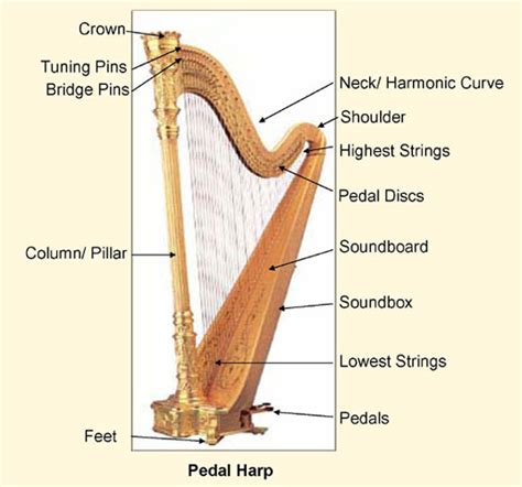 what is a l harp parts of a harp images