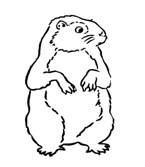 Groundhog Color Sheet Az Coloring Pages Ground Hog Coloring Page