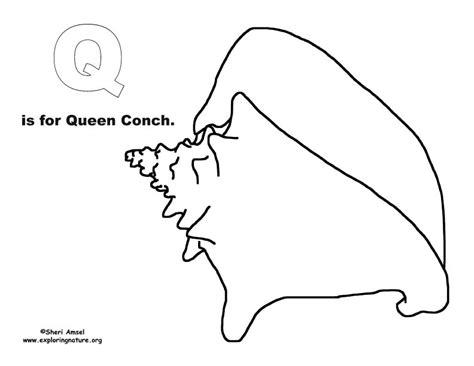 queen conch coloring page ocean alphabet coloring book exploring nature