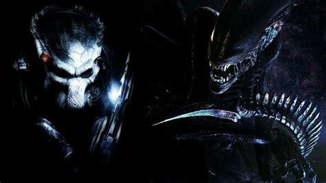 pc themes movies alien vs predator wallpapers wallpaper cave