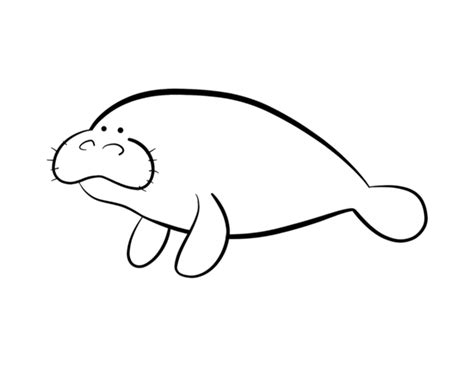 manatee coloring pages coloring pages