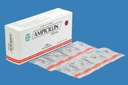Salep Penicillin generik kimia farma icillin