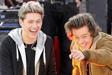 niall horan and harry make the most of the sun on their harry styles seemingly makes sexual joke on niall horan s