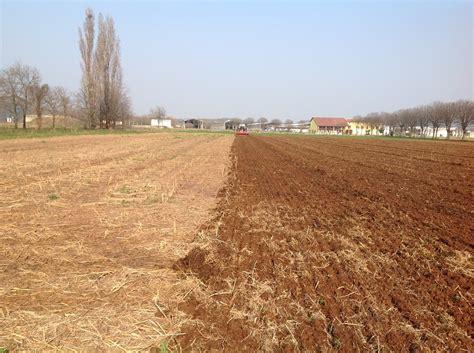 letto di semina la semina mais nel pag di castiglione delle stiviere