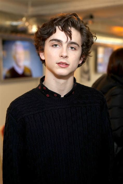 beautiful boy sundance breakout timothee chalamet joining steve carell