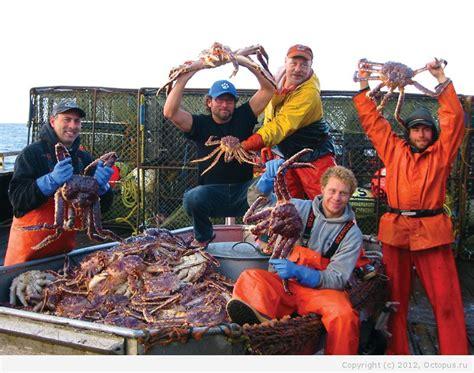 deadliest catch octopus ловля камчатского краба как она есть octopus ru