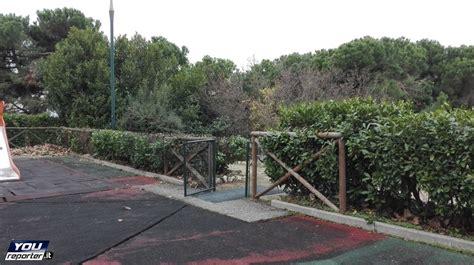 manutenzione giardini torino manutenzione verde torino premiata youreporter it