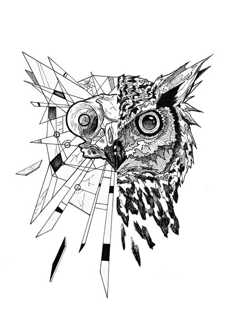 half owl by junbenliesor on deviantart