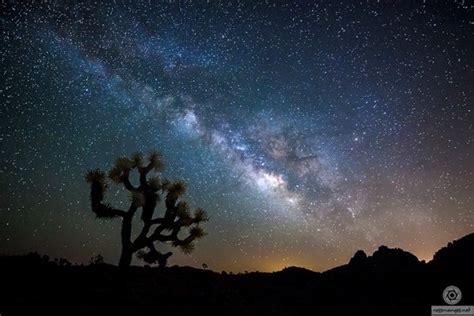 stars   ancestors   katrina