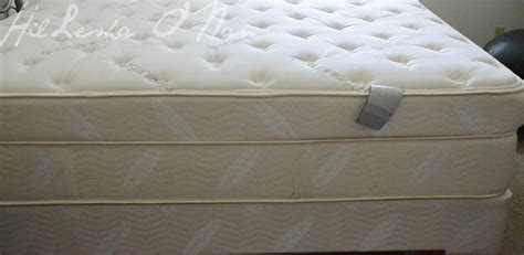 Saatva Mattresses by Greener Sleep With Saatva Luxury Mattresses To The