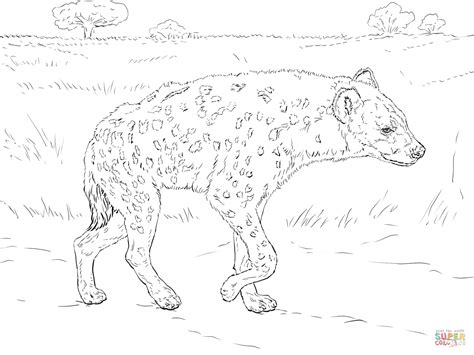 spotted hyena walking in the savannah coloring page