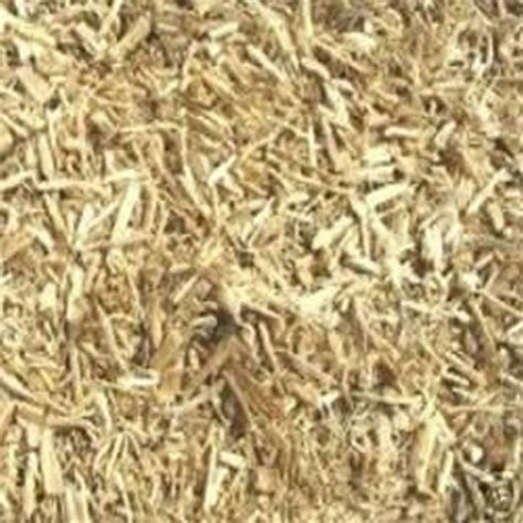 Shoo Ginseng siberian ginseng eleutherococcus senticosus root dried