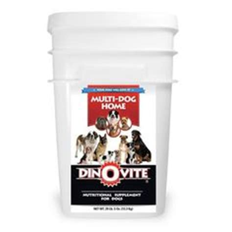 dinovite for dogs recipes for dogs on 343 pins