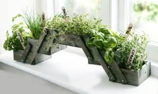 unique indoor planters indoor planter box unusual lotusep com