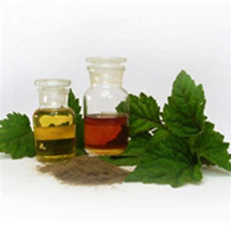 Minyak Nilam Kolaka Utara esterifikasi patchouli alkohol hasil isolasi dari minyak