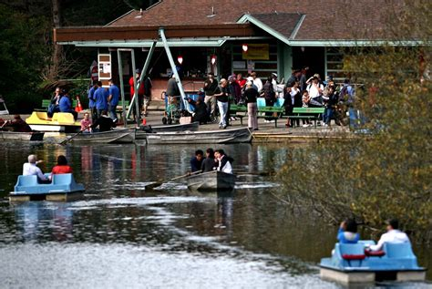 paddle boat rentals golden gate park president s day potluck picnic golden gate park stow