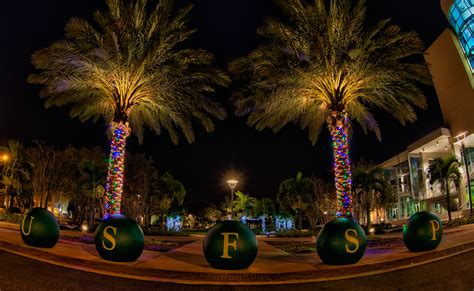 st petersburg fl christmas lights christmas lights card
