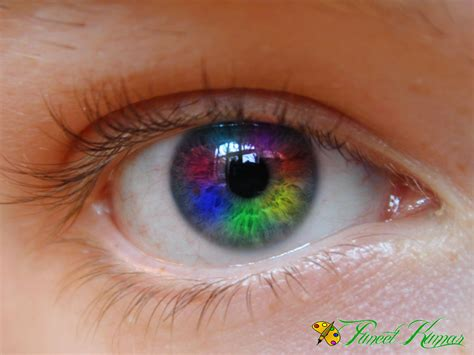 eye changing color rainbow in eye changing eye color hd wallpaper photoshop