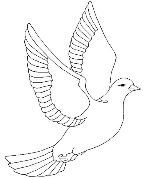 coloring pages dove bird free printout for a dove pattern bird wing coloring page