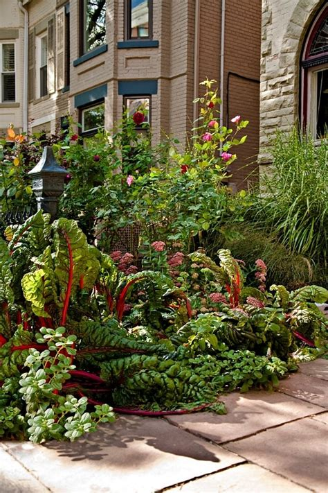 decorative trees for front yard 671 best images about beautiful vegetable gardens on